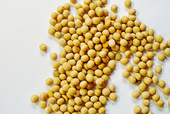すぐに使える大豆ミート特集
